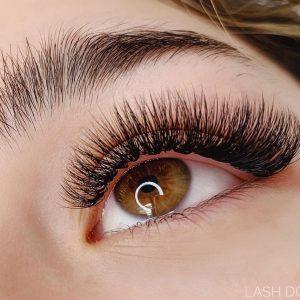 lash dolls studio - eyelash extensions - detroit - michigan - 20